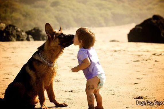 niño y perro beso.min